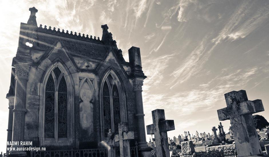 cemeteries-brighton1