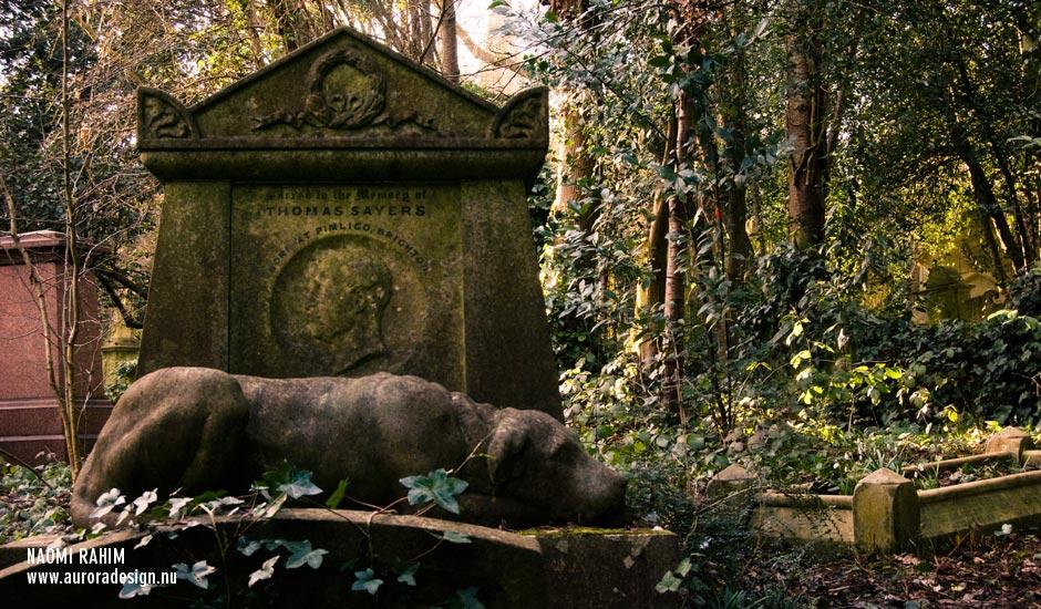 cemeteries-highgate1