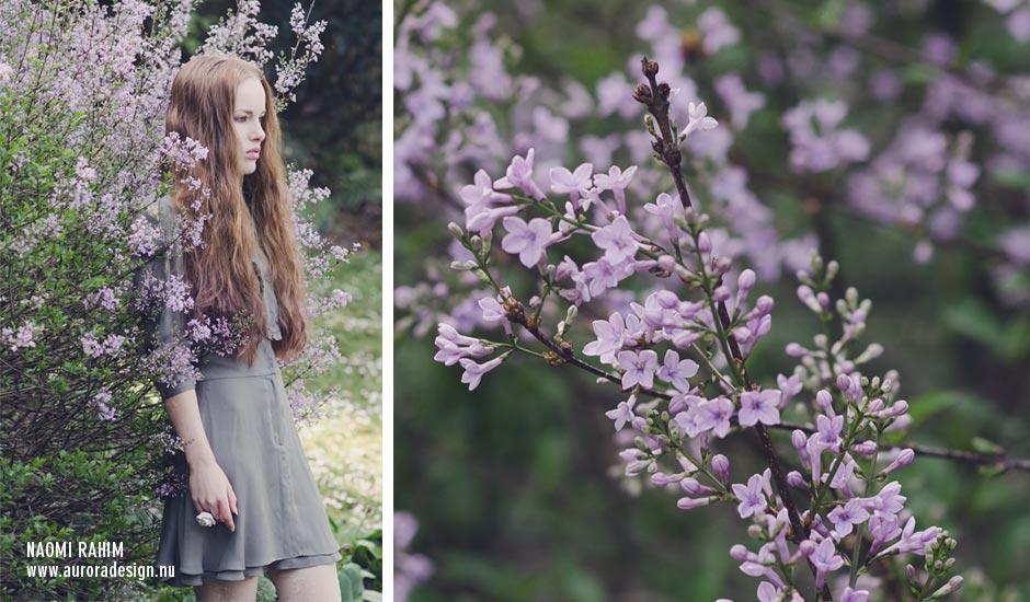 secret-garden-4