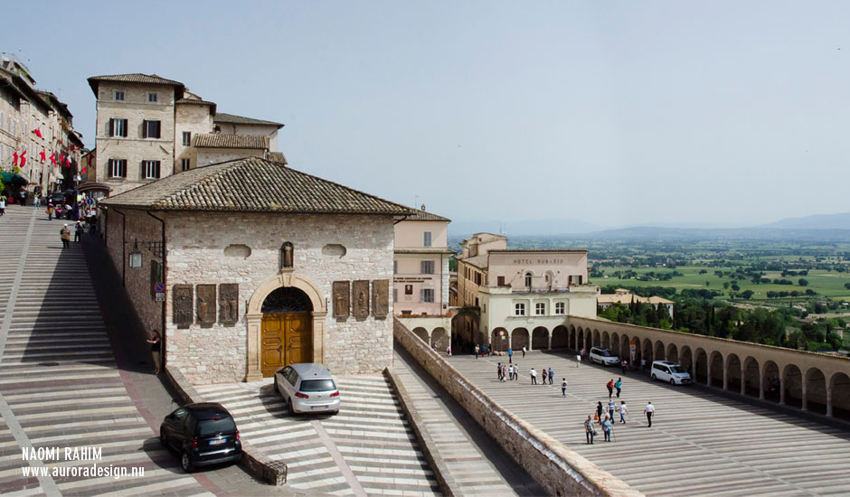 assisi-elevation